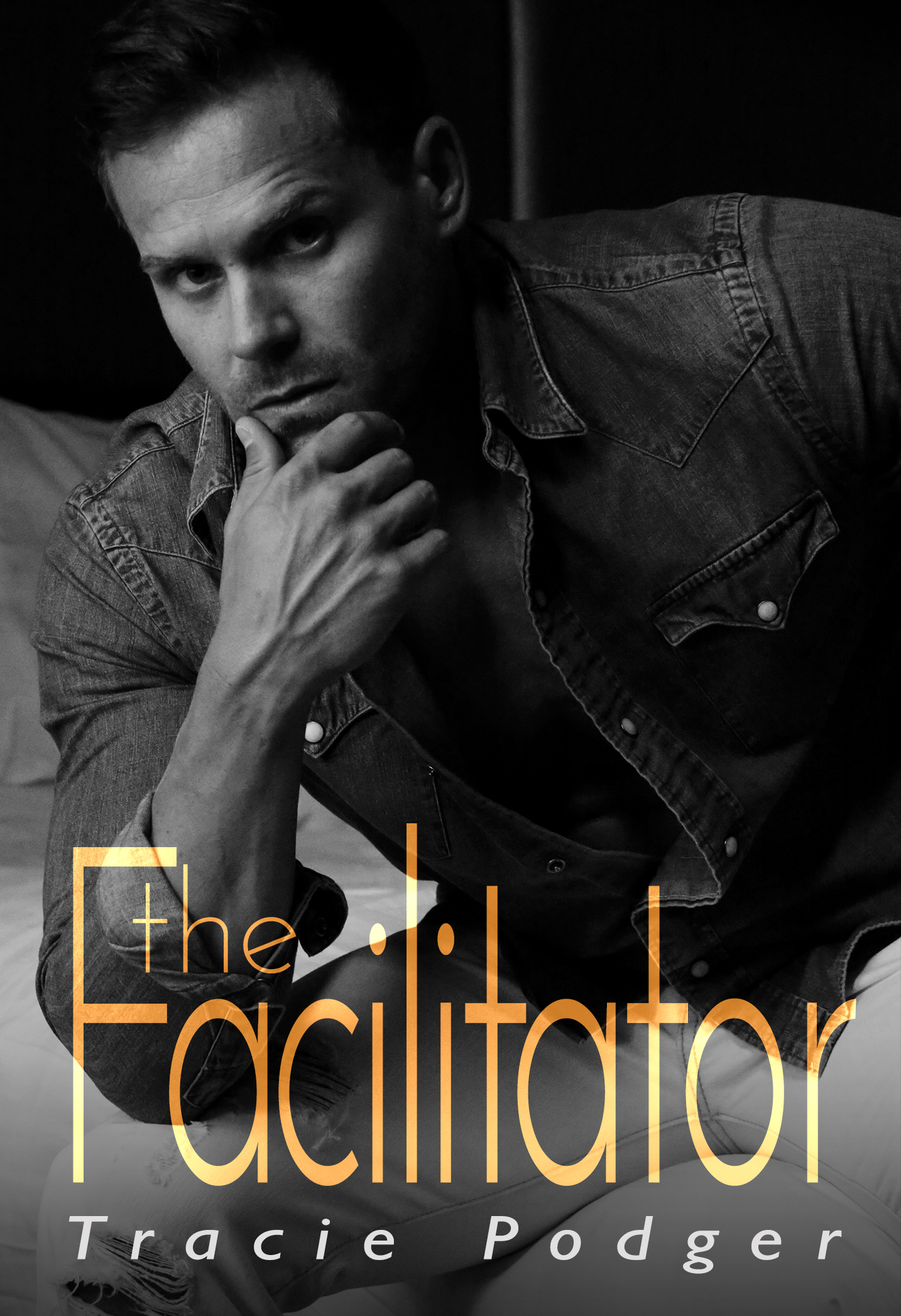 The facilitator ecover